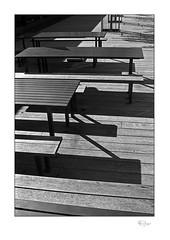 Timber #5 (radspix) Tags: canon t90 fd 3570mm f4 arista edu ultra 100 pmk pyro