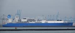 MARSHAL VASILEVSKIY (kees torn) Tags: nijlhaven europoort hoekvanholland lngtanker lng marshalvasilevskiy