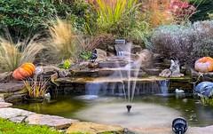 Fountain - 7658 (✵ΨᗩSᗰIᘉᗴ HᗴᘉS✵84 000 000 THXS) Tags: fountain fontaine water iphone11promax iphone belgium europa aaa namuroise look photo friends be yasminehens interest eu fr party greatphotographers lanamuroise flickering halloween autumn