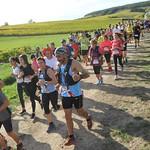 MDC 2019 - Trail