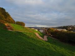 Trail link (Phil Gayton) Tags: path track trail steps grass field tree hedge sky cloud sunlight morning totnes devon uk