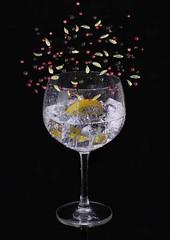 Gin Botanicles (jacquigibsonphotography) Tags: ginglass gin ice lemonlemonslice botanicles juniper juniperberries cardomon blackpeppercorns peppercorns pepper smell aroma frostedglass