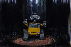 Ep... help! It's rusty in here! (Dotsy McCurly) Tags: crazytuesday rust walle figure toyphotography fun canoneos80d efs35mmf28macroisstm