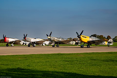 Thunderbolt 'Nellie B', Mustang 'Contrary Mary', Spitfire, and Buchon (Aeroplanes Everywhere) Tags: aircraft militaryaircraft warbird warbirds ww2aircraft vintageaircraft canoneos5dmark3 aviation canon24mm105mm airplanes unitedkingdom england northamptonshire sywellaerodrome