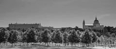 Madrid Río (Miguel Ángel Prieto Ciudad) Tags: city river travel sky people building architecture outdoors cityscape exterior place no famous palace madrid street trees urban white black monochrome spain cathedral bnw sonyalpha mirrorless alpha3000 emount