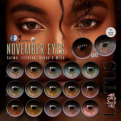 November eyes @ Sad November (LOTUS. & Ugly Duckling) Tags: sl second life gacha gatcha play game cheap free eye eyes lotus applier catwa lelutka genus mesh apply face looks beauty new fresh beautiful realistic equal10 equal 10 unrigged hud huds event buy sad november fall autumn winter secret rare