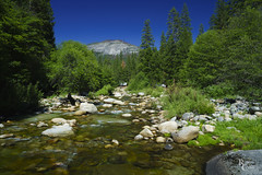 My Yosemite Happy Place (RobertCross1 (off and on)) Tags: a7rii alpha ca california emount fe1635mmf4zaoss ilce7rm2 longexposure mariposa mercedriver sierranevada sierras sony southfork wawona wawonadome yosemite yosemitenationalpark bluesky creek forest fullframe granite landscape mirrorless mountains nature river stream trees water