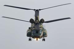 CH-47J (niokee) Tags: japanairselfdefenseforce jasdf kawasaki ch47j ch47 chinook 174500 transporthelicopter helicopter irumahelicopterairliftsquadron irumaairbase rjtj irumaairshow irumaairshow2019 aircraft airplane