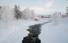 Living in Nordic winter (ikkasj) Tags: muonio lapland winter finland north snow