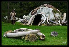 Nous avons tous quelque chose de Néandertal / We all have Neanderthals - Paléosite de Saint-Césaire (christian_lemale) Tags: paléosite saintcésaire saintonge néandertal neanderthal france nikon z6