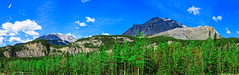 Panoramic View Of Canadian Rockies (http://fineartamerica.com/profiles/robert-bales.ht) Tags: canada fineart flickr landscape photouploads places scenic sky natural nature park bc travel landmark evergreen outdoors columbia kootenay rockies mountains canadian british trees clouds peak panorama panoramic national forest mountain rocky alberta beauty jasper banff rocks sunlight icefield range robertbales canadianrockiesmountains britishcolumbia toadriver lodge alaskanhighway