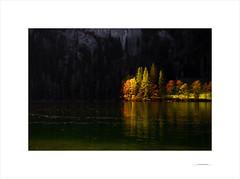 Las formas del otoño (E. Pardo) Tags: otoño herbst autumn árboles trees bäume formas formen forms reflections reflejos spiegelungen see lago lake luz licht light colores colors farben