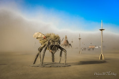 Bee or Not to Bee (WayneToTheMax) Tags: ferguson burning man 2019 art installation bee honey insect metal cloud dust pollen pollination pollinate climate