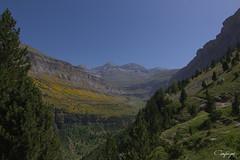 Sintiendome pequeño en Ordesa... (cienfuegos84) Tags: ordesa huesca cienfuegos84 montaña mountain naturaleza nature