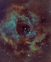 Rosette nebula in Hubble Palette (Ethan.WYH) Tags: qhyccd qhy space explore scientific deepsky deepspace stars night rosettenebula rosette nebula ngc ngc2244 narroband sho hubble hubblepalette rose monoceros unicorn telescope dso gas dust nasa europeanspaceagency