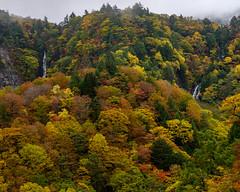 Urabandai autumn scenery (shinichiro*) Tags: 米沢市 山形県 日本 20191020ds23671 2019 crazyshin nikonz6 z6 nikkorz2470mmf4s october autumn yonezawa yamagata japan jp candidate 49019055851