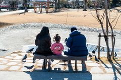 Family Day. (bgfotologue) Tags: photo fujiyama 本州 winter 冬 東海道 風光 photography landscape 富士宮 關東 鳥居 snow 靜岡 unesco image bellphoto 富士山 攝影 tripod imaging tumblr 500px shizuoka 日本 bgphoto 風景 japan gitzo