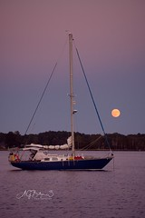 Full Moon Over the East River (albertgbutzer3.com) Tags: fujifilmxt2 fujifilmxf55200 fullmoon sailing eastriverofmobjackbay chesapeakebay