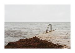 (unterwasserpfeife) Tags: leica m3 film 35mm analog kodak gold200 sweden