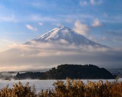 2019 Autumn Fuji (shinichiro*) Tags: 南都留郡 山梨県 日本 20191102ds24346 2019 crazyshin nikonz6 z6 nikkorz2470mmf4s november autumn fuji lakekawaguchi ohishi candidate 49019317971
