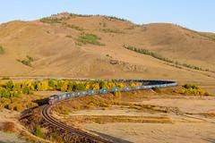 2TE116UM-xxx UBTZ, Bumbat – Khonkhor (cz.fabijan) Tags: railway železnice train vlak bahn zug lokomotiva locomotive motorová diesel 2te116um 2te116 ubtz ulaanbaatartömörzam khonkhor mongolsko mongolia mn 2тэ116ум 2тэ116 убтз хонхор улаанбаатартөмөрзам