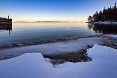 Koli - Finland (Sami Niemeläinen (instagram: santtujns)) Tags: koli suomi finland lieksa åielinen metsä forest luonto nature outdoors hiking trekking ulkoilu kansallispuisto national park maisema landscape