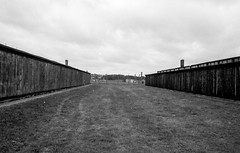 Auschwitz-Birkenau. My shadow has grown a bit darker. (ewitsoe) Tags: agfaapx400 analog analogue auschwitz krakow nikonfm2 film summer warsaw holocaust horror history poland bleak bnw monochrome terror remember