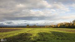 Perspective automnale dans le Seeland. (Philippe Bélaz) Tags: automne bleu campagnes cultures jaune lumières nuageux ombres paysages perspectives rural vert
