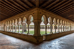 Moissac 03 (Chris Protopapas) Tags: sony moissac france abbey cloisters romanesque romane medieval sculpture