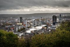 Liège city on a rainy autumn day (Dannis van der Heiden) Tags: liège luik maas cityscape river city belgium buildings sky clouds bridges houses people mountain hill trees wallonia d750 autumn haze boat nikond750 tamron70210mmf4