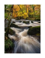 River Teign, Dartmoor, Devon, UK (SimonHMiles) Tags: dartmoor moor wood woods woodland forest tree trees foliage leaf leaves water river stream flow rock boulder