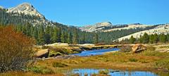 Tuolumne Meadow and River, Yosemite 10-19 (inkknife_2000 (10.5 million + views)) Tags: easternsierranevada yosemitenationalpark california usa landscapes mountains dgrahamphoto creek rocks waterreflections calmwater tuolumnemeadow tuolumneriver autum trees pines gravelriverbank rapids rocksinriver granitedomes