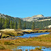 Tuolumne Meadow and River, Yosemite 10-19