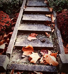 a stairway to ... (delnaet) Tags: autumn herfst graveyard cimetière begraafplaats stairs trappen