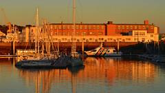 marina dans le couchant, brest (eric-foto) Tags: nikond800 pennarbed brittany brest breizh bzh bretagne finistère port harbour littoral boat bateau marina sunset coucherdesoleil