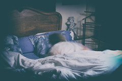 recovery from rough night (the ripped bystander) Tags: desaturated female sleeping bed rustic faded