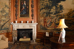 Lamp And Lady (dhcomet) Tags: belton house lincolnshire nationaltrust nt heritage fireplace tapestry room lamp portrait grantham