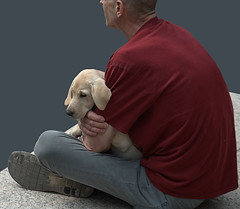 Cuddle (Scott 97006) Tags: man dog human male canine pet puppy hold cuddling