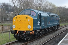 Class 40 40012 'Aureol' (Adam Fox - Plane and Rail photography) Tags: whistler english electric loco locomotive diesel locos locomotives trains train uk east lancs railway lancashire rawtenstall class 40s 60 br british rail railways preservation preserved railroad blue d212 ee type 4