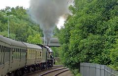 21 En route to Pontypool IMGP0555sp (Clementinos2009) Tags: 2011cathedralsexpresstoludlowandshrewsbury11thjune steamdreams 6024kingedwardi