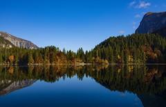 Colori allo specchio (giannipiras555) Tags: lago riflessi natura montagna alberi foliage autunno landscape cielo paesaggio panorama trentino tovel nikon