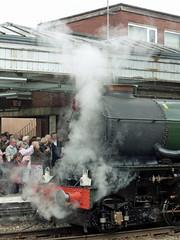 50 6024 King Edward I,  Shrewsbury Station P1030815sp (Clementinos2009) Tags: 2011cathedralsexpresstoludlowandshrewsbury11thjune steamdreams 6024kingedwardi shrewsburystation