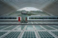 Liège-Guillemins railway station (Dannis van der Heiden) Tags: liègeguillemins train railway liège luik city elevator platform calatrava station architecture santiago interior walonia geometric geometry nikond750 d750 tokina1628mmf28