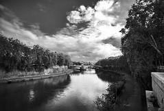 Río Tíber II bn (Joaquín Mª Crespo) Tags: byn blackwhite bw trees rivers clouds utbanscapes bridges voigtländer21mm