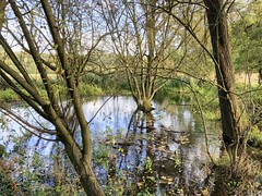 Photo of Battlemead Common