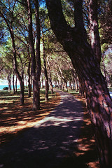 Along Trieste north beach (titan3025) Tags: