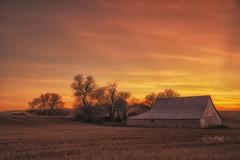 RDB_6723 (rbelstad) Tags: palouse sunset wheat farm barn trees sky clouds
