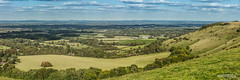 Easterly to North-Easterly panorama of Sussex Weald from Crowborough to Heathfield, and a Chalk quarry, just above Lewes. (Scotland by NJC.) Tags: hill تَلّ colina 小山 brdo kopec bakke forhøjning landskabet heuvel mäki colline hügel λόφοσ collina 丘 언덕 ås wzgórze deal холм backe เขาเตี้ยๆ tepe coğrafya пагорб đồi trees foliage vegetation arboretum شَجَرَة árvore 树 drvo strom træ boom albero 木 나무 tre drzewo copac дерево village قَرْيَة vila 村庄 selo vesnice landsby pueblo kylä dorf χωριό paese 村 마을 wieś aldeia sat деревня by หมู่บ้าน köy село làng ditchlingbeacon southdownsnationalpark westmeston plumpton green eastsussex england