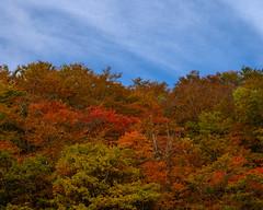 Urabandai autumn scenery (shinichiro*) Tags: 耶麻郡 福島県 日本 20191020ds23639 2019 crazyshin nikonz6 z6 nikkorz2470mmf4s october autumn inawashiro fukushima japan jp 福島 urabandai 裏磐梯 candidate 49020876563