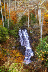 Fall Blue Ridge Parkway 2019 10 (rschnaible) Tags: fall autumn color colorful outdoor landscape woods forest north carolina blue ridge parkway mountains the south waterfall water